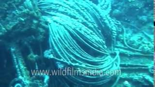 Ship Wreck in the Indian Ocean - unidentified and mysterious