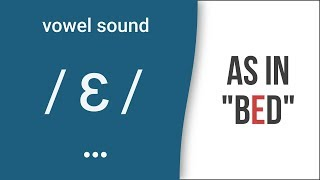 "Vowel Sound /ɛ/ as in ""bed""- American English"