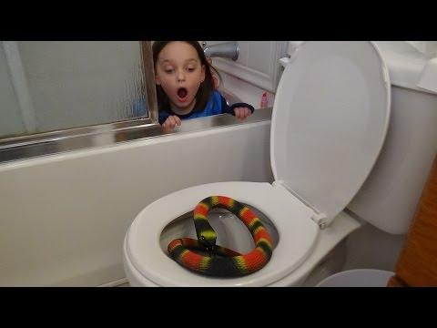 Giant Snake In Toilet vs Plunger Girl