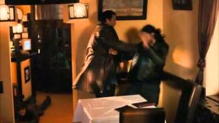 Best of Steven Seagal   Born To Raise Hell 2010