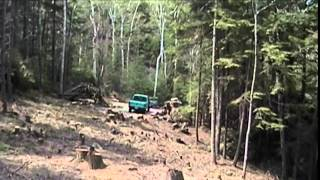 Keene Castle - pulling stumps out of the road by hand - 5/4/2001