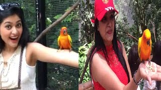 Sakka Podu Podu Raja Actress Vaibhavi Shandilya & Nisha Ganesh with Bird || Cute Video