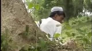 মজিবর
