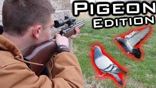 Pigeon Hunting - COD Modern Warfare Edition!