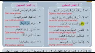 imam hatip lisesi 12 sınıf arapca 6  unite 2  ders konu anlatım