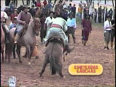 DVD Ginetadas Gaúchas Wagner Medina 11de14 Ginetes Veteranos e Prova do Rebolcão