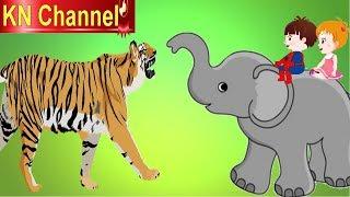 Hoạt hình KN Channel BÉ NA CỨU VOI CON THOÁT KHỎI HỔ DỮ | Hoạt hình Việt Nam | GIÁO DỤC MẦM NON