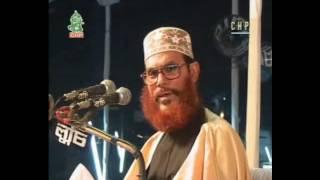 আল্লাহর সৃষ্টির বিশালতা , Allama Delwar Hossain Sayeedi, bangla waz, waz mahfil