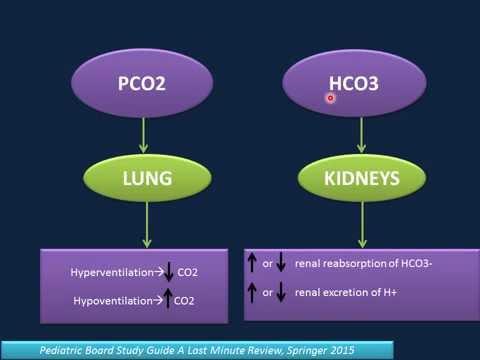 Xxx Mp4 Arterial Blood Gas Analysis ABG 3gp Sex