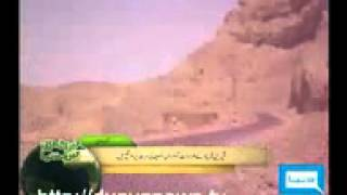 Shabir Rakhshani Report on Sherin Farhad Report.mp4