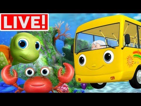 Xxx Mp4 Wheels On The Bus Underwater More Kids Songs Little Baby Bum LIVE STREAM 3gp Sex
