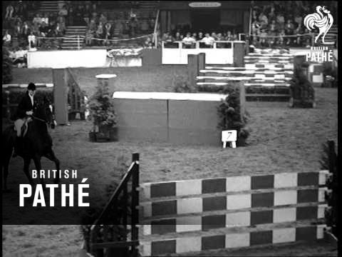 Horse Of The Year (1964)