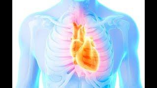"""10 إنذارات يطلقها الجسم , قبل شهر من حدوث """" الأزمة القلبية """" .. !!"""