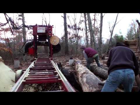 Milling Lumber from Reclaimed Poplar Logs Bandsaw Mill