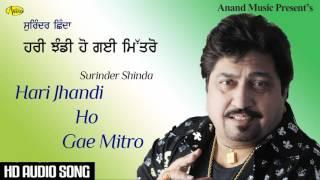 Surinder Shinda II Hari Jhandi Ho Gae Mitro II Anand Music II New Punjabi Song 2016