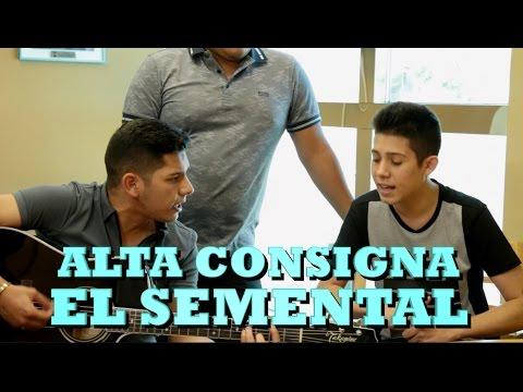 ALTA CONSIGNA - EL SEMENTAL (Versión Pepe's Office)