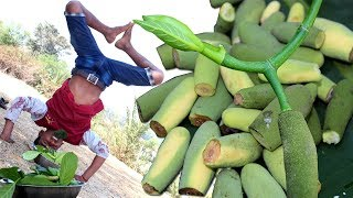 Kathaler Muchi & Tetul (Tamarind) Makha | Village Delicious Food in Nature