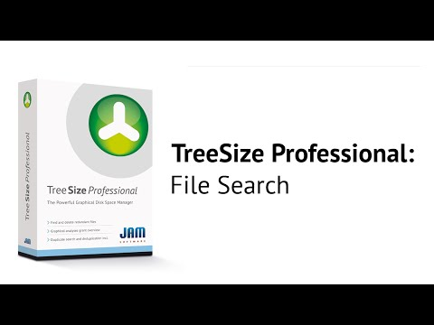 TreeSize Professional - File Search (English Version)