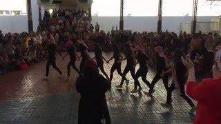 MIS Jordanian girls dabke