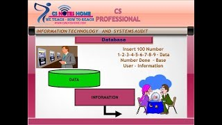 free cs professional  video class information technology and system audit Databases Management