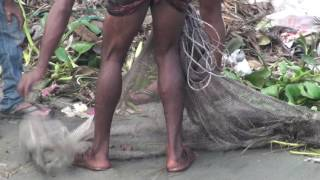 Incredible Cast Net fishing In River