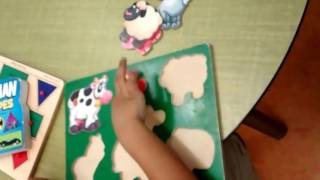 Lets Learn Animals Puzzle Preschool learning