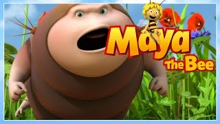 Maya the bee - Episode 32 - Ringa, ringa, Caterpillar