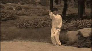 Kung fu - XingYi - Rooster set (Master Han YanWu)
