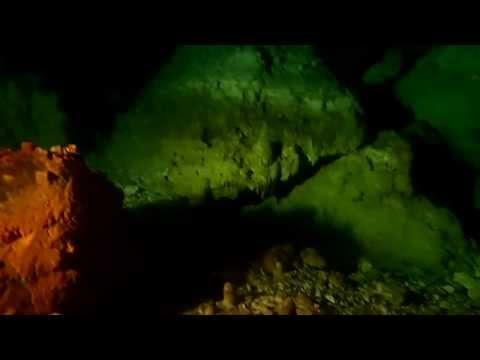 Xxx Mp4 Cenote At The Hacienda Sotuta De Peon 3gp Sex