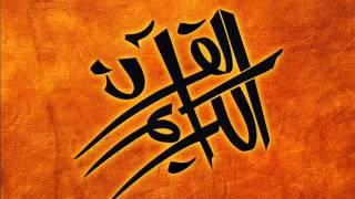 ما تيسر من سورة الأنعام [13 - 35] - القارئ محمد محمود الماذني