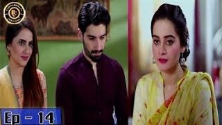 Zindaan Episode - 14 - 9th May 2017-  Top Pakistani Drama