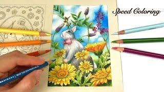 Speed Coloring: First Day of Spring | Menuet De Bonheur Coloring Book