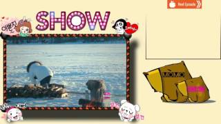 We Are In Love S2 Ep6 Review ♥ We Are In Love Song Ji Hyo CUT Ep 6 ♥   In Arctic circle