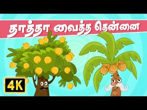 தாத்தா வைத்த தென்னை (Thatha Vaitha Thennai) | Vedikkai Padalgal | Chellame Chellam | Tamil Rhymes