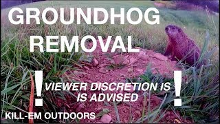 How To Remove Groundhogs