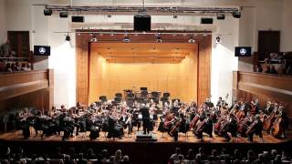 Mocart: Mala noćna muzika, Mladen Jagušt