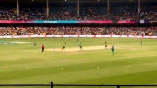 #ICC #WT20 2016 - Mitchell Marsh c Shakib b Mustafizur - Australia vs Bangladesh