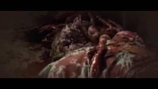 The Devil's Rock 2011