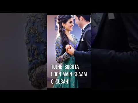 Tujhe Sochta Hun Me - Full Screen Status.