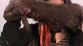 Otto; or, Up with Dead People (2008) Trailer