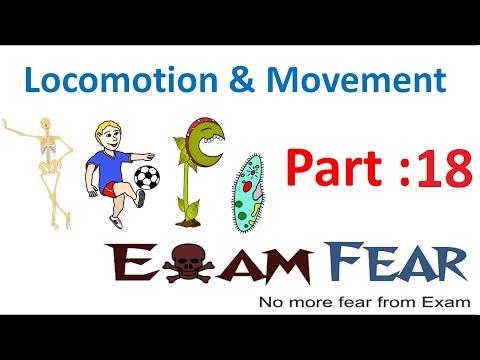 Biology Locomotion & Movement part 18 (Disorders :Arthritis, Osteoporosis, Gout) CBSE class 11 XI
