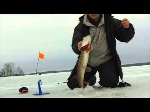 рыбалка во  самарской области нате жерлицы видео