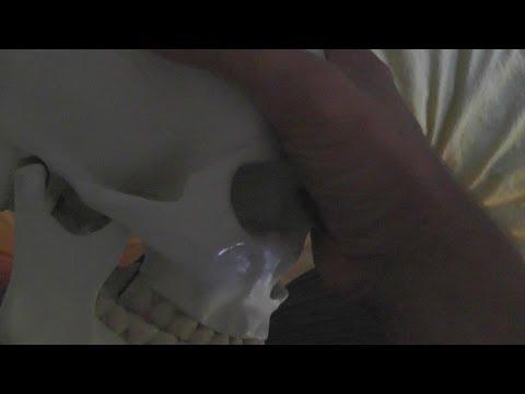 Extreme Sex Videos