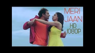 Meri jaan || full video song (shael)