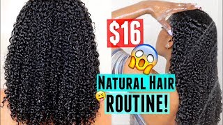 $16 Affordable Wash & Go Routine| Natural Curly Hair!