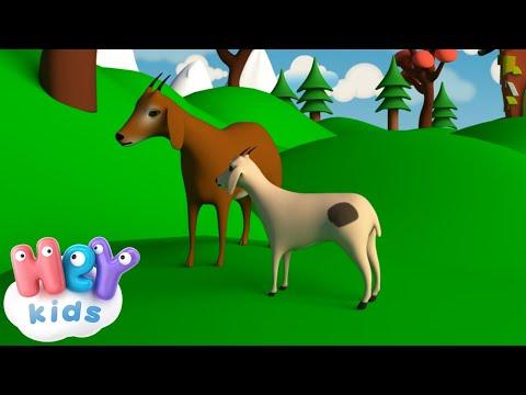 Veo Veo Canzoni Per Bambini Youtube
