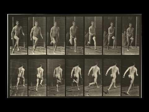 Animal Locomotion: Plates #61-70 (1884-1887) by Eadweard Muybridge