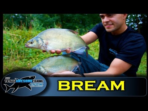 Float Fishing for Bream with Sweetcorn The Totally Awesome Fishing Show