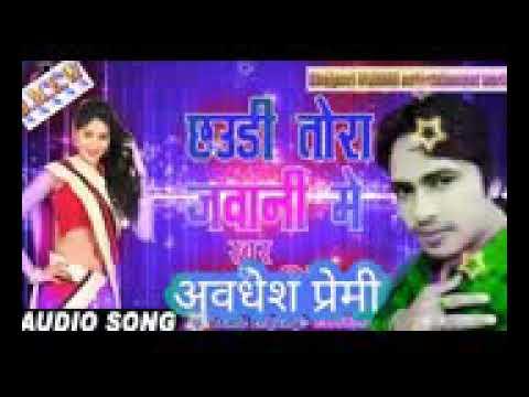 Xxx Mp4 Awadhesh Parmi Bhojpuri 3gp Sex