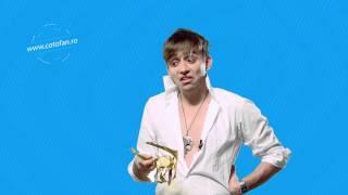 Cotofan/Politia muzicii - Adriana Rusu vs. Nicole, Radu Sirbu vs. limba romana